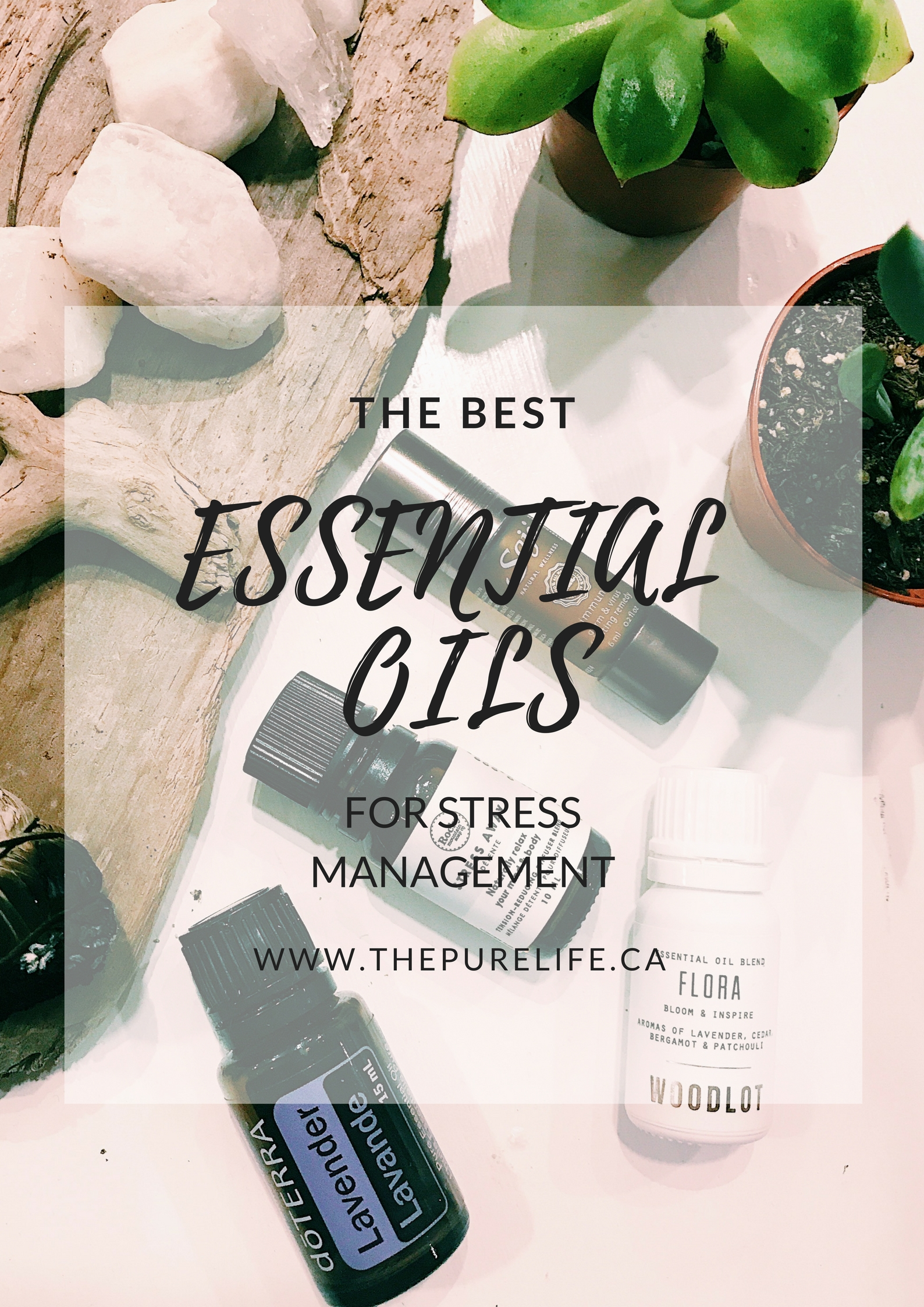 Essential Oils for Stress Management